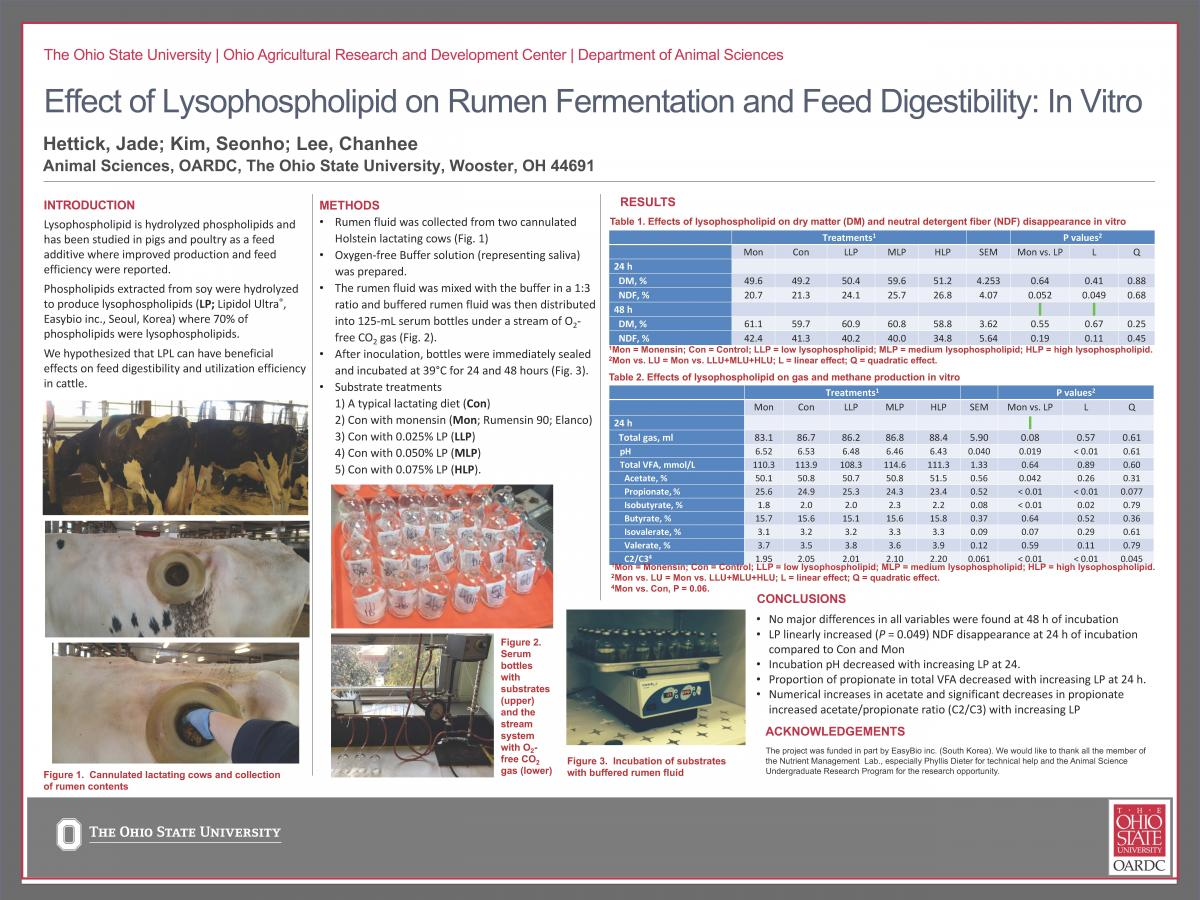 Effect of Lysophospholipid on Rumen Fermentation and Feed Digestibility: In Vitro