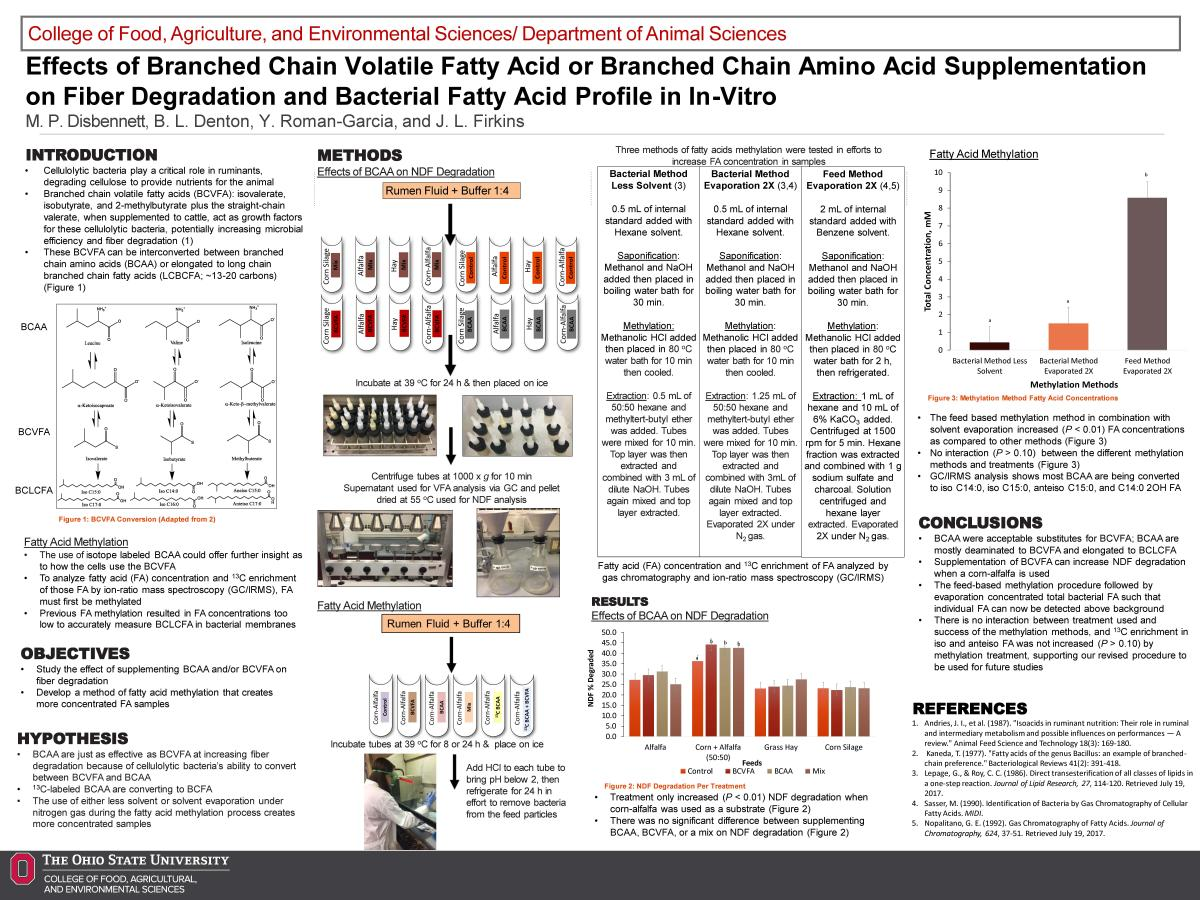 Effects of Branched Chain Volatile Fatty Acid or Branched Chain Amino Acid Supplementation on Fiber Degradation and Bacterial Fatty Acid Profile in In-Vitro