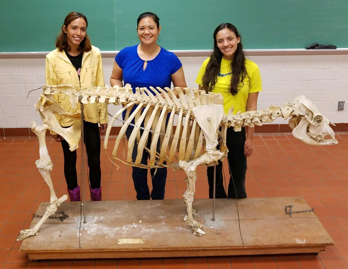 "Katiria ""Kat"" Perez Fernandez, Dr. Lyda G. Garcia, and Ivanelys ""Iva"" Martinez Santana"