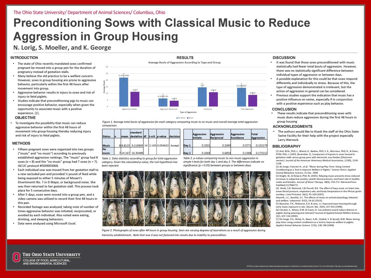 Preconditioning Sows with Classical Music to Reduce Aggression in Group Housing
