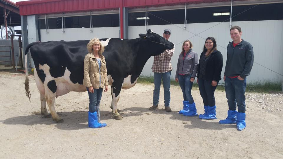 "The Dairy Judging Team meets ""Shauna"" at Seagull Bay Dairy, Inc."