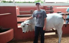 Bo Harstine, graduate student, with a Nelore Heifer in Brazil where he worked on his research.