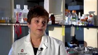 2014 Distinguished Senior Faculty Research Award Winner: Sandra Velleman