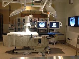 Veterinary operating room