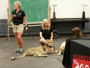 Columbus Zoo Visitors